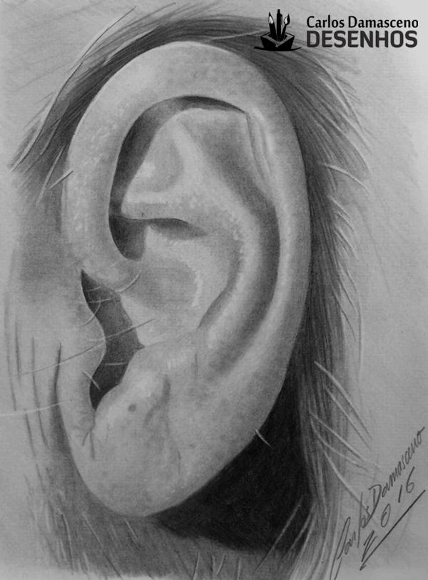 Curso de Desenho Realista de Carlos Damasceno - aula orelha masculina