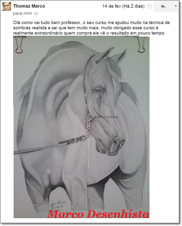 Curso de Desenho Realista de Carlos Damasceno - depoimento de aluno - desenho de cavalo